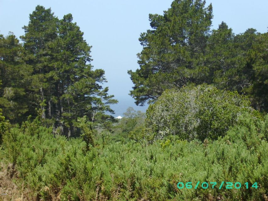 Additional photo for property listing at 15301 N Highway 1 15301 N Highway 1 Caspar, California 95420 United States