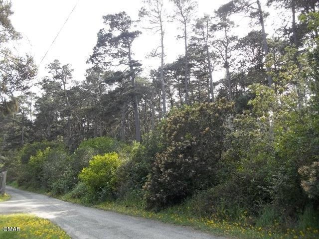 Additional photo for property listing at None None Georges Lane Fort Bragg, California 95437 Estados Unidos