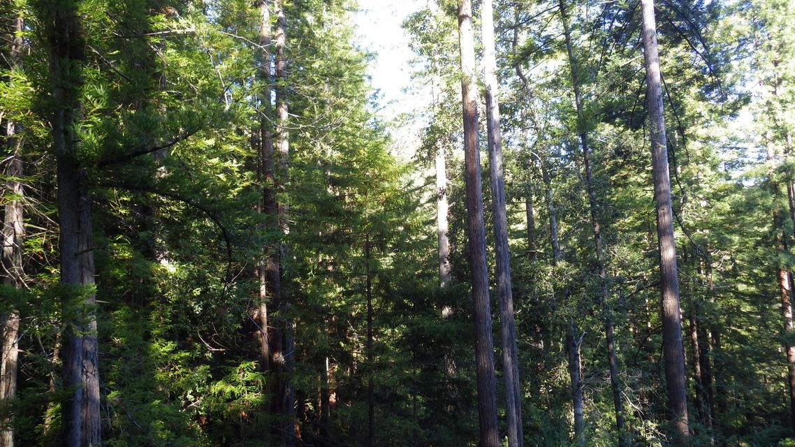 Additional photo for property listing at 40633 Little River Airport Road 40633 Little River Airport Road Little River, California 95456 United States