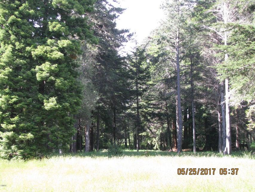 Additional photo for property listing at 31680 Johnson Lane 31680 Johnson Lane Fort Bragg, California 95437 Estados Unidos