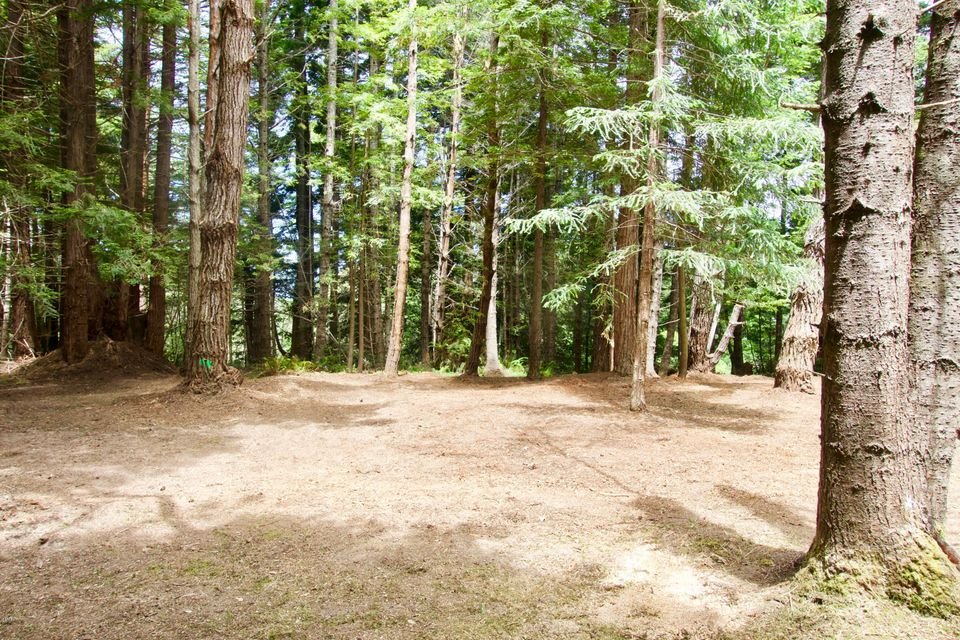 Additional photo for property listing at 31850 Westwood Drive 31850 Westwood Drive Fort Bragg, California 95437 Estados Unidos