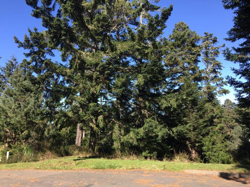 Additional photo for property listing at 44080 Ocean Vista Court 44080 Ocean Vista Court Mendocino, 加利福尼亚州 95460 美国