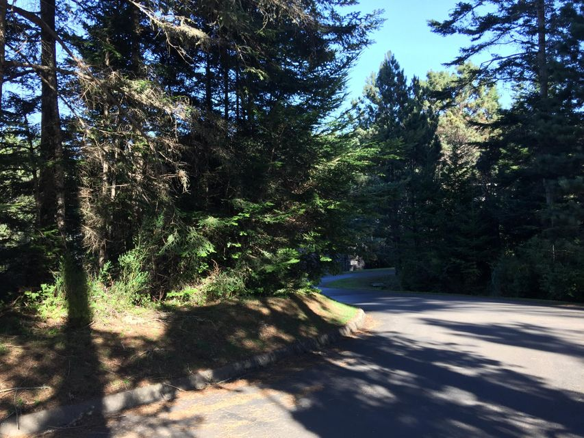 Additional photo for property listing at 44080 Ocean Vista Court 44080 Ocean Vista Court Mendocino, California 95460 Estados Unidos