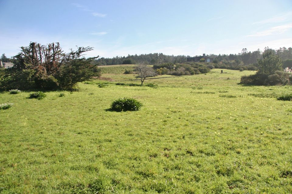 Additional photo for property listing at 44831 Baywood Drive 44831 Baywood Drive Mendocino, 加利福尼亚州 95460 美国