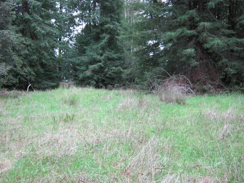 Additional photo for property listing at 22000 Dunlap Lane 22000 Dunlap Lane Fort Bragg, California 95437 Estados Unidos