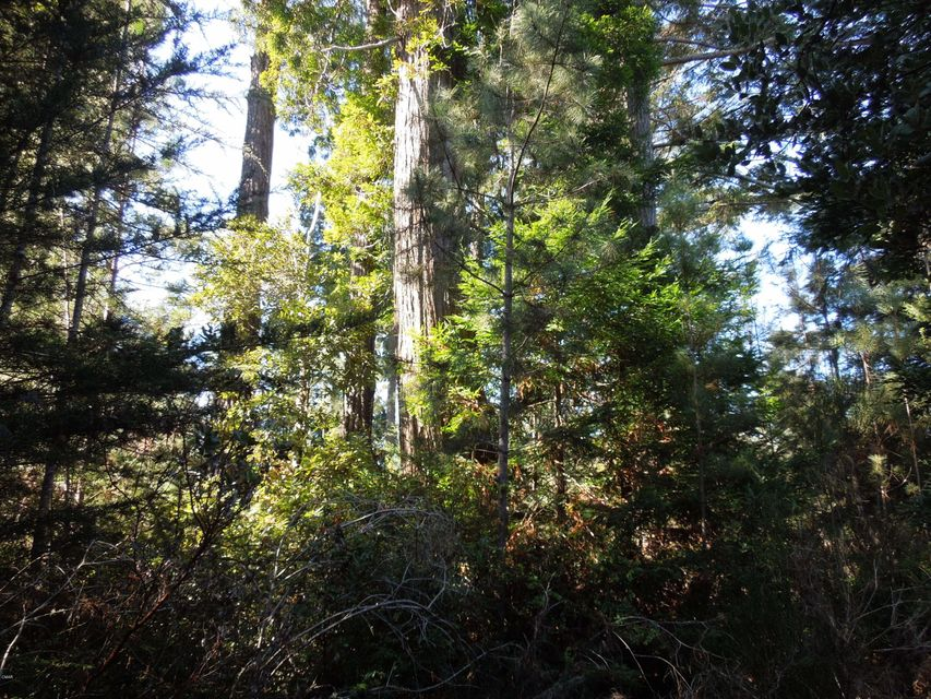 Acreage for Sale at 18900 Timber Pointe Drive 18900 Timber Pointe Drive Fort Bragg, California 95437 United States