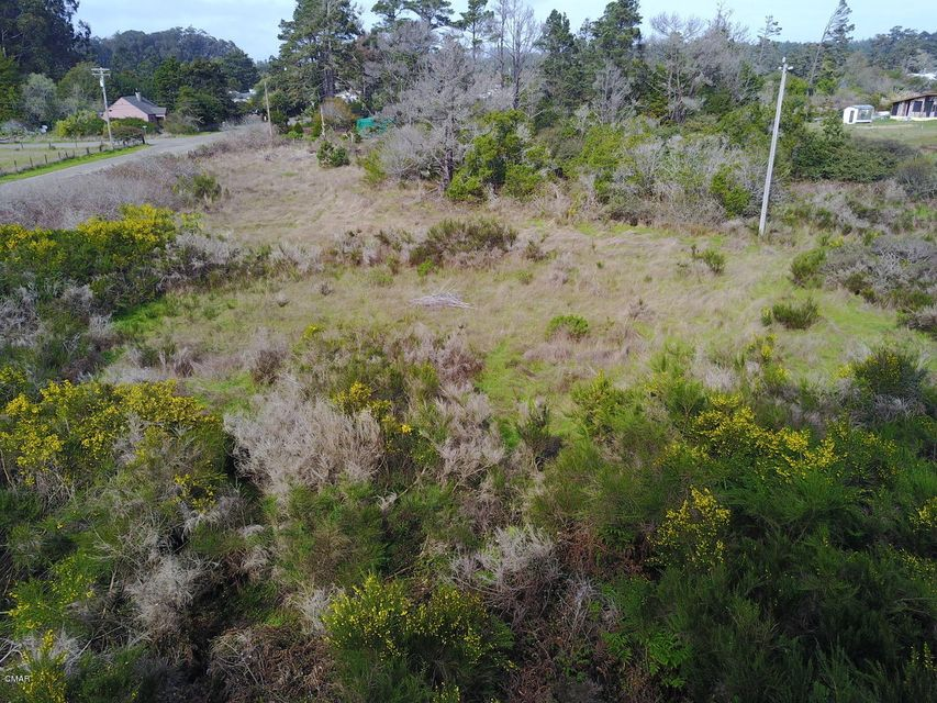 Additional photo for property listing at 33180 Boice Lane 33180 Boice Lane Fort Bragg, California 95437 Estados Unidos