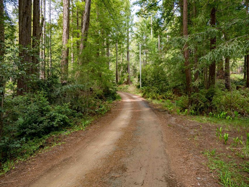 Additional photo for property listing at 32401 Albion Ridge Road 32401 Albion Ridge Road Albion, California 95410 Estados Unidos