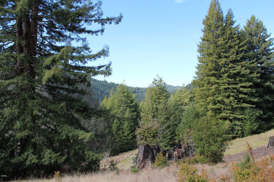 Additional photo for property listing at 25270 Company Ranch Road 25270 Company Ranch Road Fort Bragg, 加利福尼亚州 95437 美国