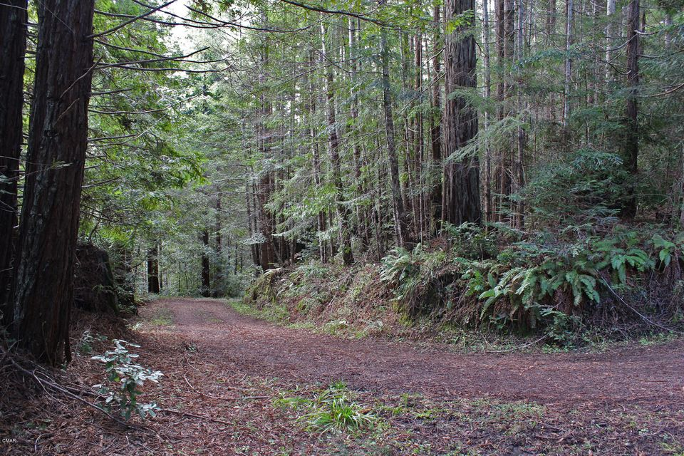 Additional photo for property listing at 25270 Company Ranch Road Fort Bragg, 加利福尼亚州 95437 美国