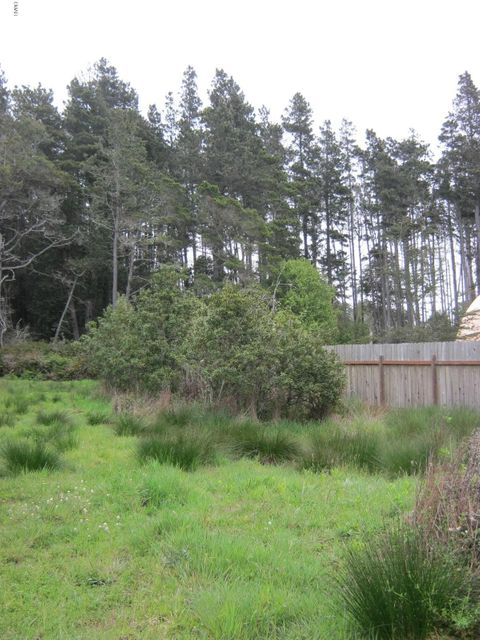 Additional photo for property listing at 16291 Old Caspar Rail Road 16291 Old Caspar Rail Road Fort Bragg, California 95437 Estados Unidos