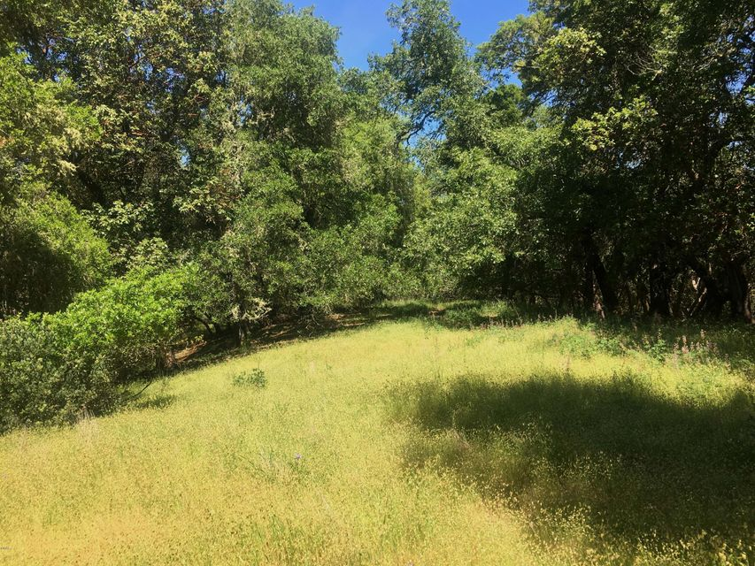 Additional photo for property listing at 20551 Mountain House Road 20551 Mountain House Road Yorkville, California 95494 United States