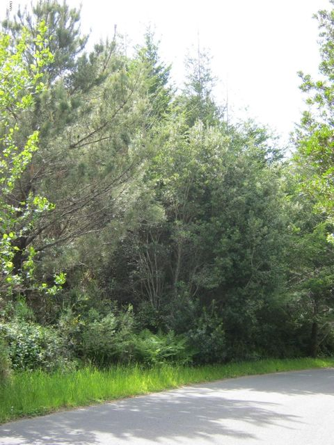 Acreage for Sale at 15950 Shane Drive 15950 Shane Drive Fort Bragg, California 95437 United States