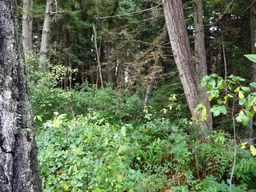 Additional photo for property listing at 23765 Bouldin Lane 23765 Bouldin Lane Fort Bragg, 加利福尼亚州 95437 美国