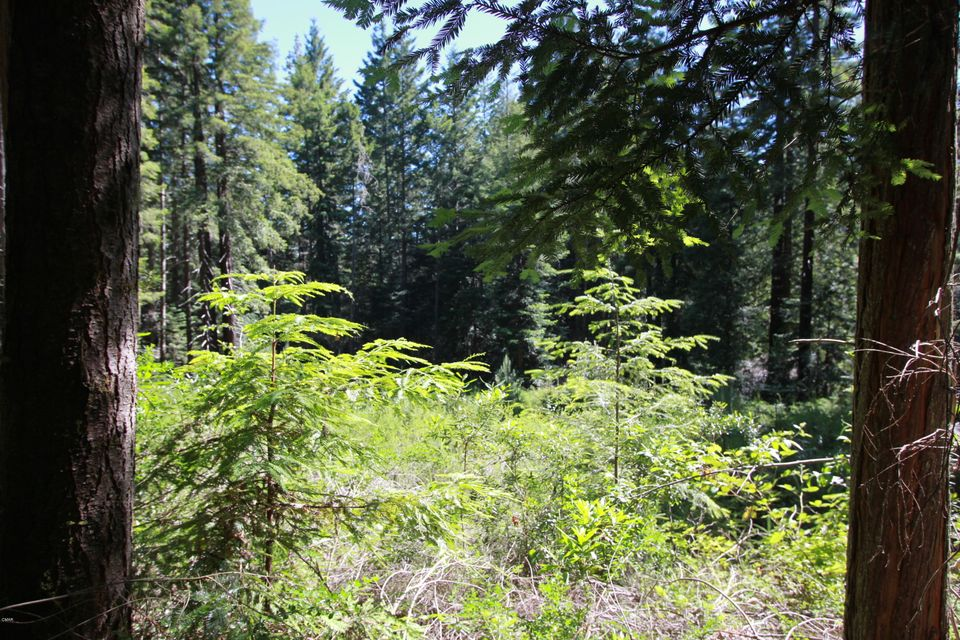 Acreage for Sale at 27610 State Hwy 20 27610 State Hwy 20 Fort Bragg, California 95437 United States