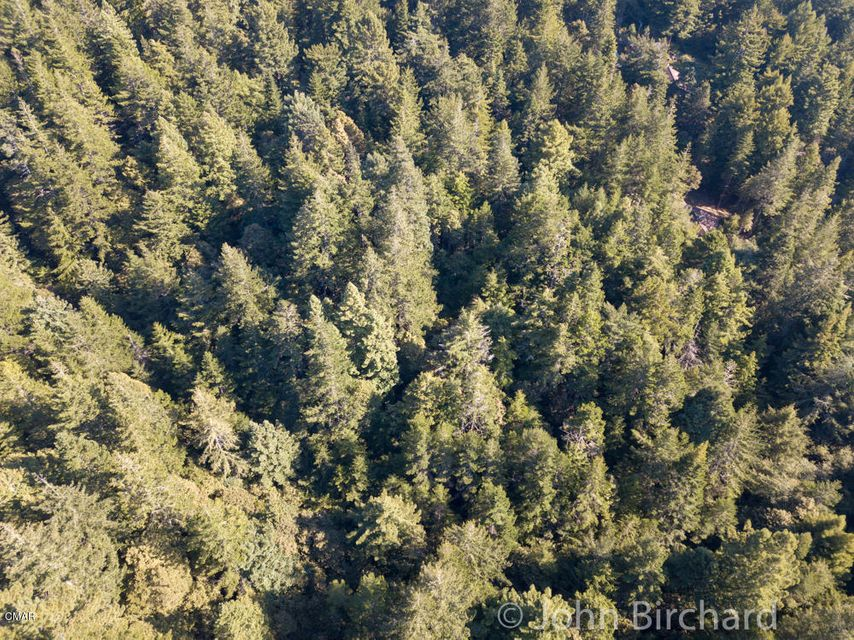 Acreage for Sale at 17231 Franklin Road 17231 Franklin Road Fort Bragg, California 95437 United States