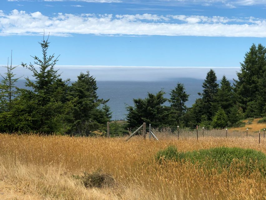 Acreage for Sale at 8821 S Hwy 1 8821 S Hwy 1 Elk, California 95432 United States