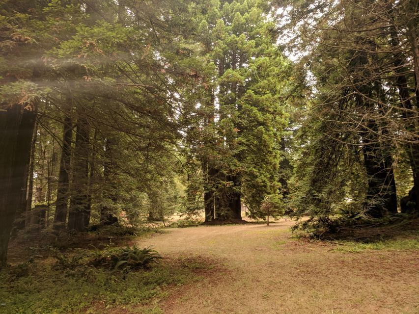 Acreage for Sale at 32390 Old Willits Road 32390 Old Willits Road Fort Bragg, California 95437 United States
