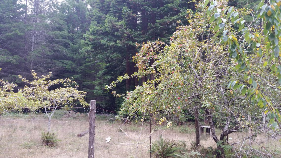 Additional photo for property listing at 31701 Middle Ridge Road 31701 Middle Ridge Road Albion, California 95410 Estados Unidos