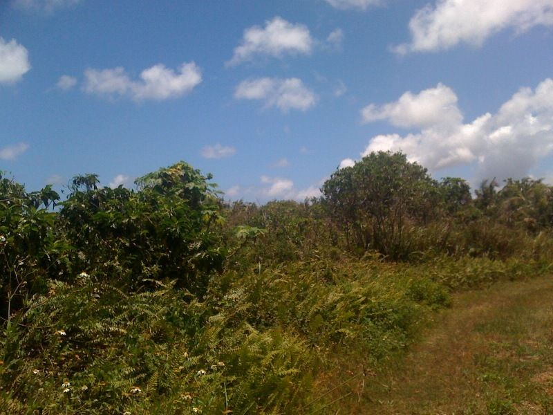 Land / Lots for Sale at Route 3, Ncstams Dededo, Guam 96929