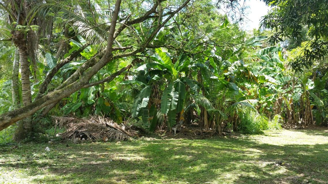 Single Family Home for Sale at 1145 E. Canton Tasi Merizo, Guam 96915