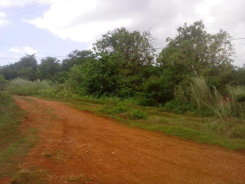 Land / Lots for Sale at Route 16 Barrigada, Guam 96913