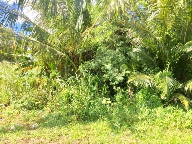 Land / Lots for Sale at Route 4A Talofofo, Guam 96915