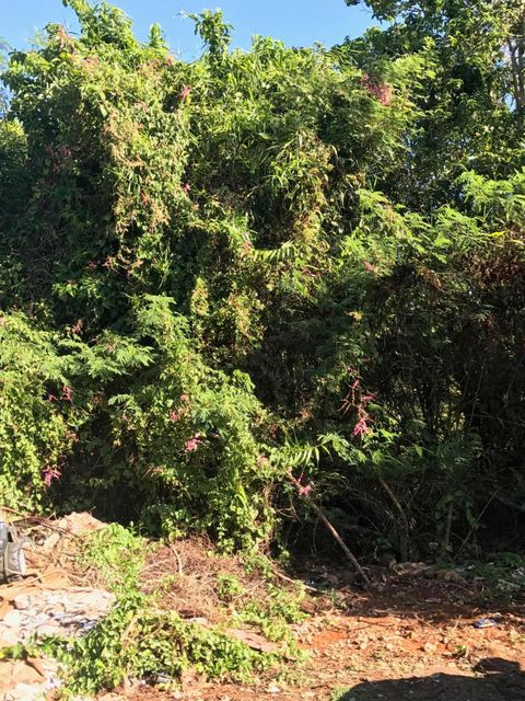 Land / Lots for Sale at Adacao Road Mangilao, Guam 96913