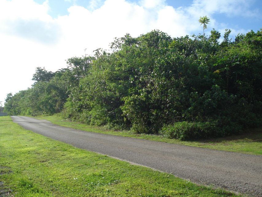 Land / Lots for Sale at Villagomez St. Villagomez St. Barrigada, Guam 96913