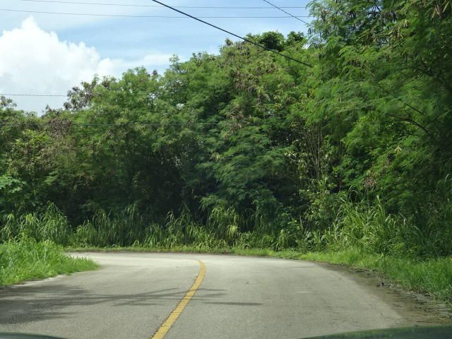 Land / Lots for Sale at San Miguel Street San Miguel Street Talofofo, Guam 96915