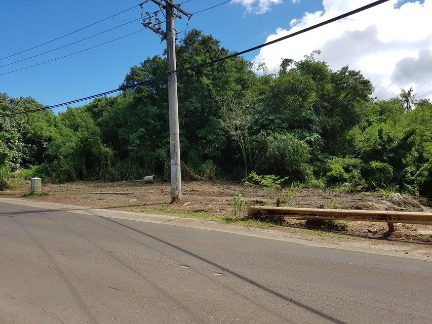 土地 のために 売買 アット Route 4 Route 4 Merizo, グアム 96915