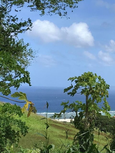 Land / Lots for Sale at Binakle Road Binakle Road Asan, Guam 96910