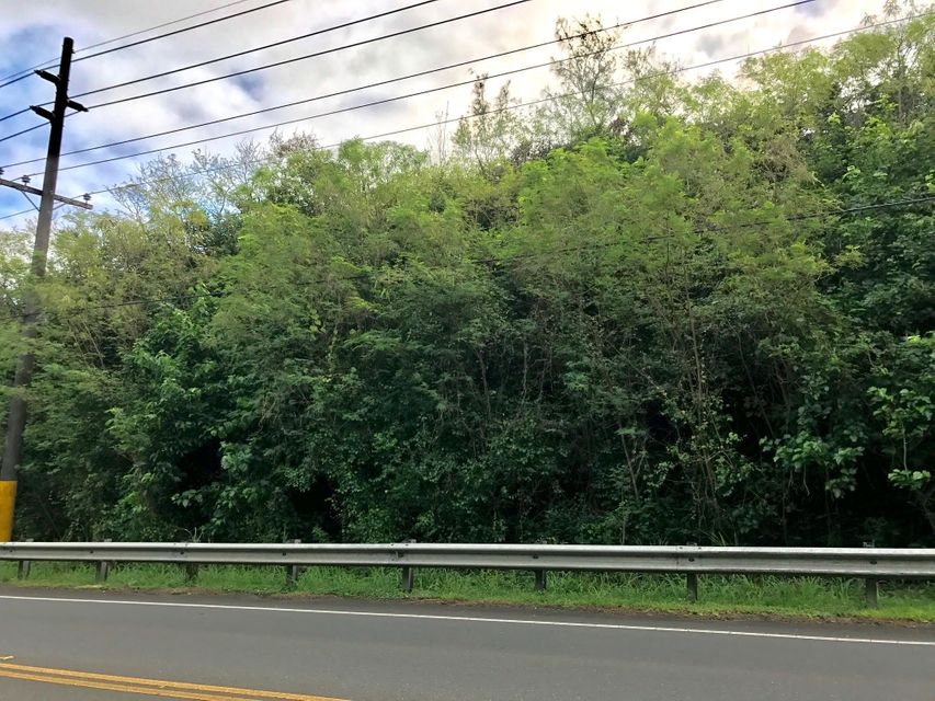 Land / Lots for Sale at Route 4 Route 4 Yona, Guam 96915