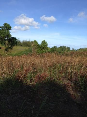 Land / Lots for Sale at Route 17 Cross Island Road Route 17 Cross Island Road Yona, Guam 96915