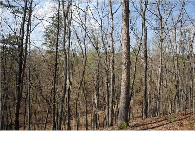 Photo of home for sale at 5 Hwy 136, Elijay GA