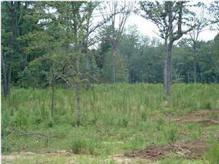 Photo of home for sale at 12 Denvil, Trenton GA