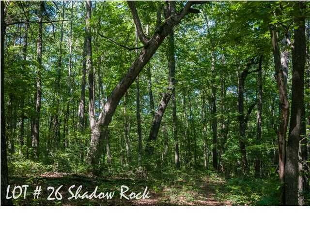 Photo of home for sale at 26 Shadow Rock, Monteagle TN