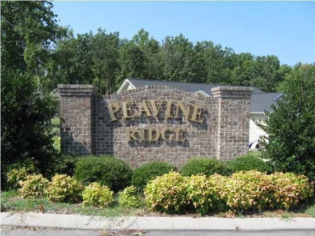Photo of home for sale at 0 Peavine, Rock Spring GA