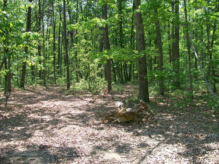 Photo of home for sale at Lot 104 Lou Rd, Pikeville TN