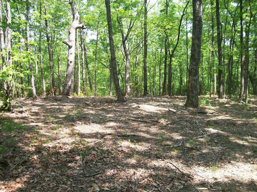 Photo of home for sale at Lot 125 Harlee Vista Dr, Pikeville TN