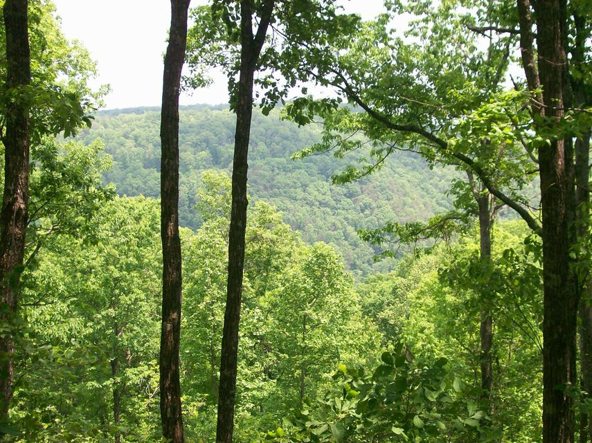 Photo of home for sale at Lot 207 Harlee Vista Dr, Pikeville TN