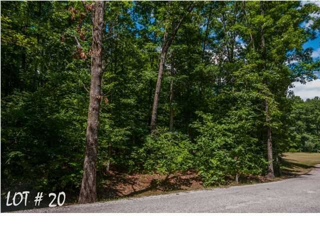 Photo of home for sale at 20 Shadow Rock, Monteagle TN
