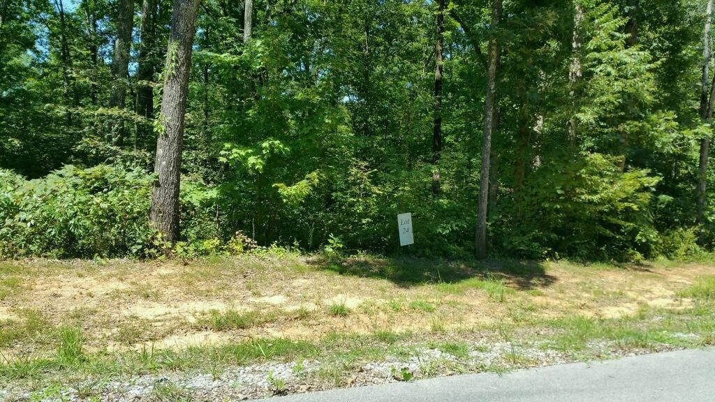 Photo of home for sale at 0 Stonecliff Dr, South Pittsburg TN