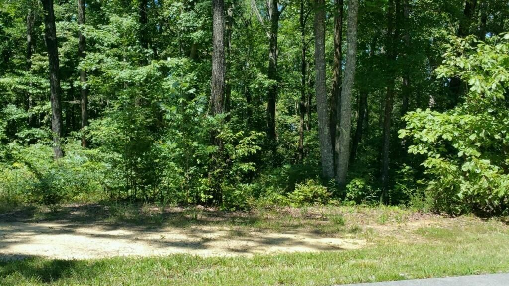 Photo of home for sale at 0 Stoneclift Dr, South Pittsburg TN
