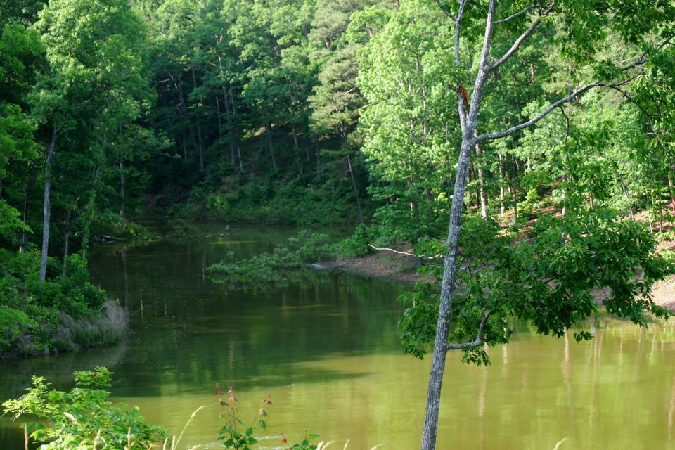 Photo of home for sale at 0 Riverview, Dandridge TN