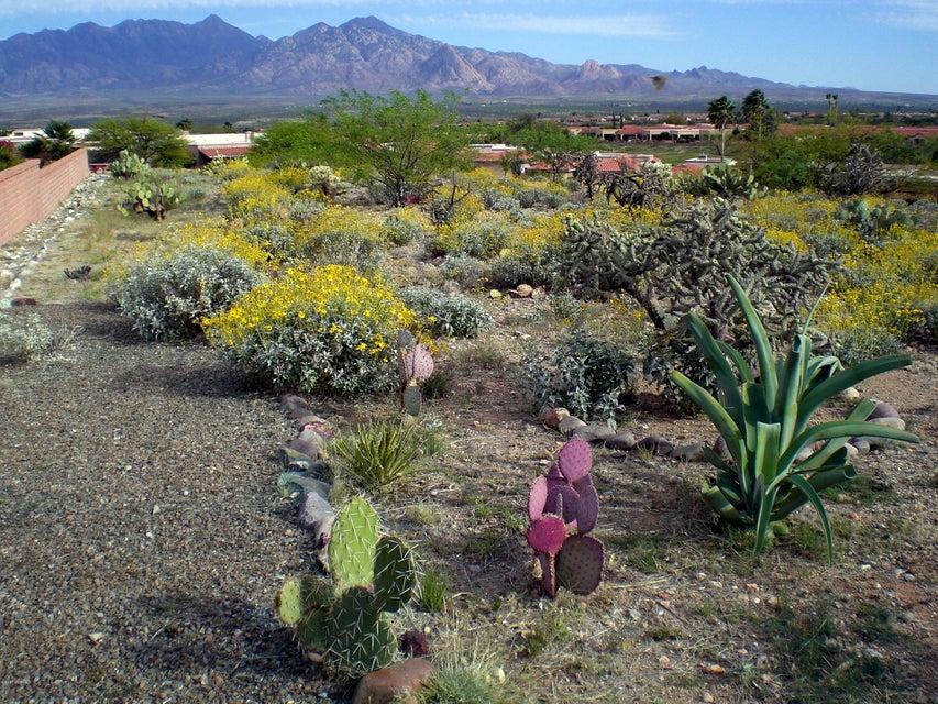 2025 W Via Nuevo Leon, Green Valley, AZ 85622
