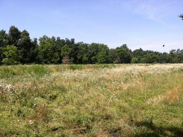Property view.