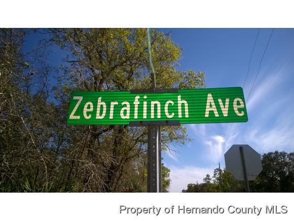 000 Zebrafinch Avenue