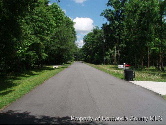 0 Violet Road