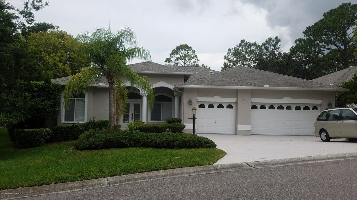 7387 Blue Skies Drive, Spring Hill, FL 34606